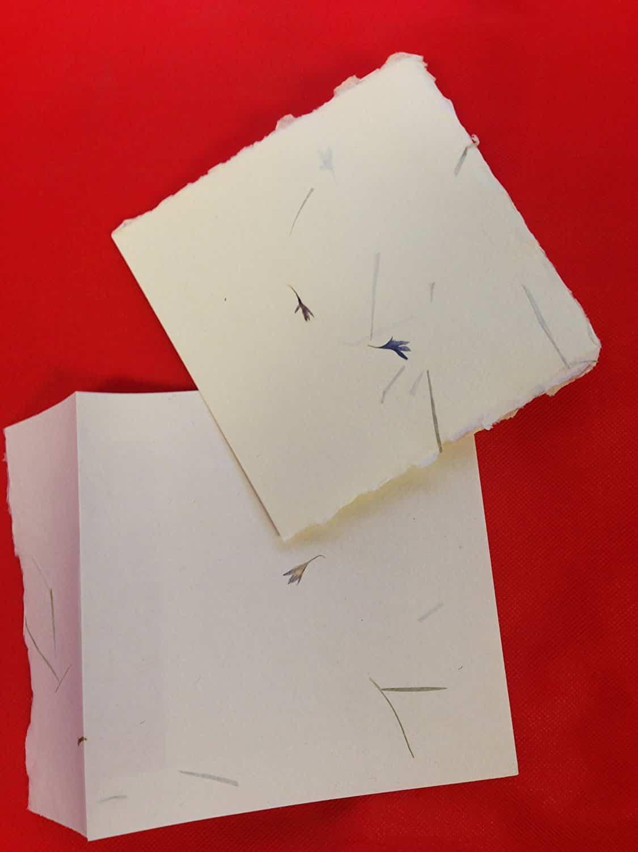 Square Pressed Flower Paper Cards Envelope