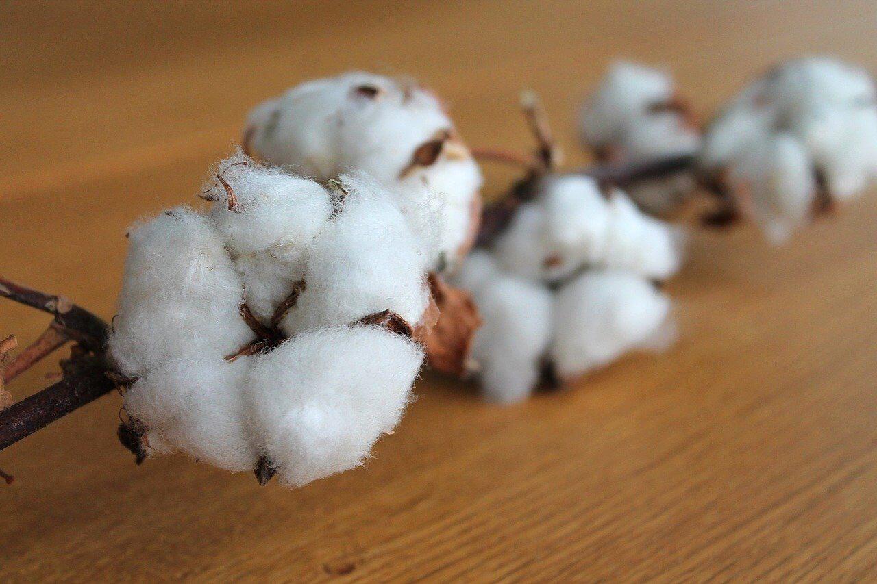 cotton-fabrics-for-dresses-canvas-etc