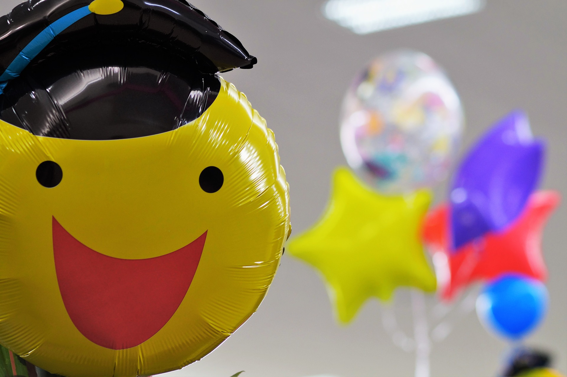 celebrate with your graduate balloons decorate canvas etc